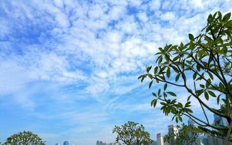 山东省商品储备企业减税约1.2亿元