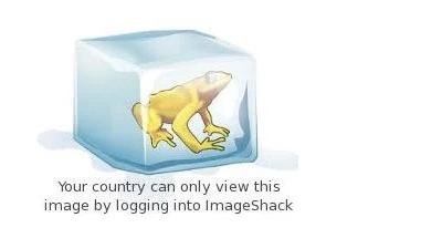您所在的国家 地区只能通过登录ImageShack来查看此图像