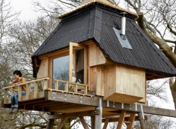 中林希希在多塞特郡树林的高跷上创造作家的小屋