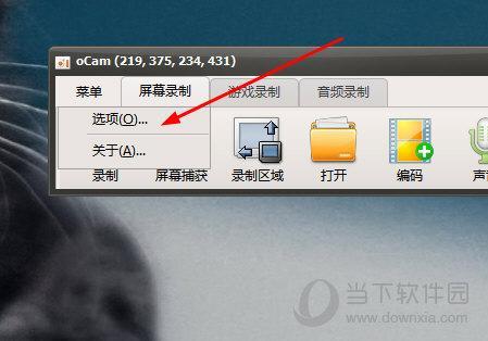 教大家oCam录屏怎么调整视频质量的方法