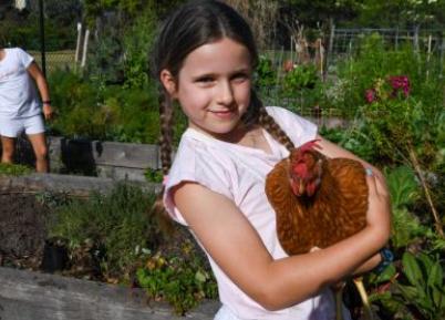 最富裕郊区的社区花园需求旺盛