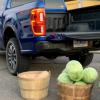 2019年福特Ranger比白菜多