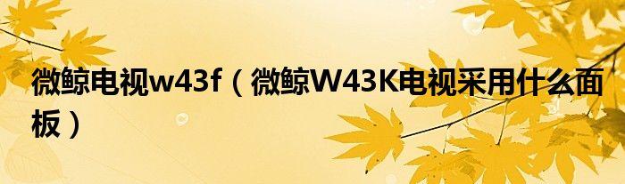 微鲸电视w43f(微鲸W43K电视采用什么面板)